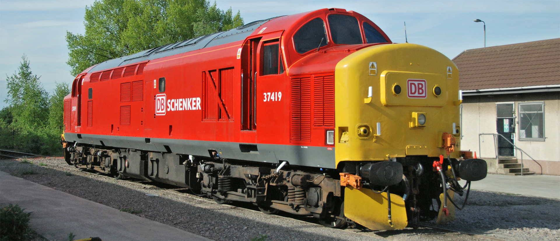 Bachmann Oo Class 37 In Db Livery Available Now From