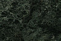 Woodland Scenics L164 Lichen - Dark Green