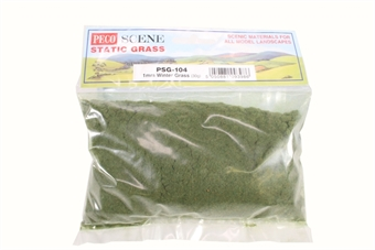 PSG-104 Winter grass, static grass 1mm - 30g bag