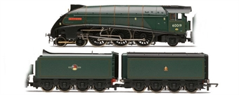 """R3103 Class A4 4-6-2 60019 """"Bittern"""" in BR Green with Double Tender - Special Edition"""
