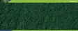 R8883 Moss Green Bag Coarse - Ground cover turf